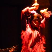 i Carácter flamenco !