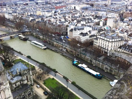 La Seine vue des tours de Notre-Dame