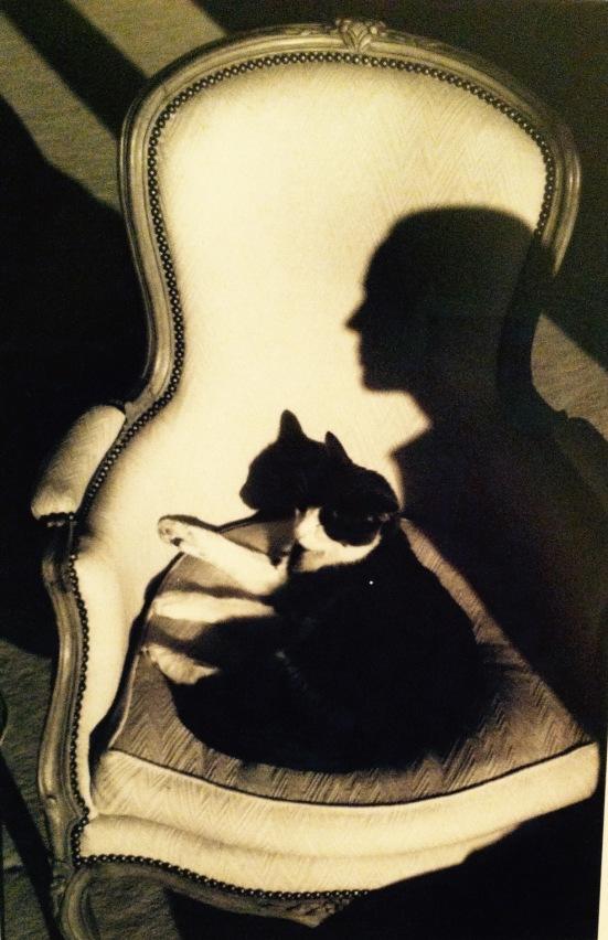 Ulysse et l'ombre de Martine, Paris, 1989 © Henri Cartier-Bresson