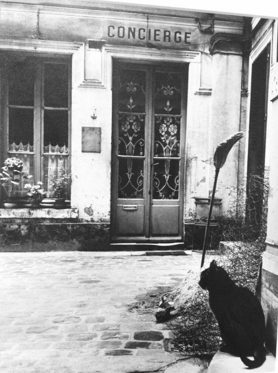 Le chat de la concierge devant la loge, rue de Tournon, Paris, 1957 © Janine Nièpce