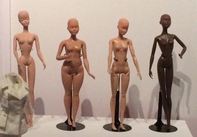 Les quatre morphologies Barbie
