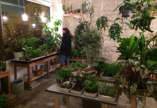 Bazar bio, rayon jardinage