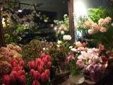 Fleurs charmantes
