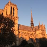 Les souvenirs évanouis de Notre-Dame
