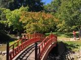 Le jardin Albert Kahn, un idéal depaix
