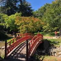 Le jardin Albert Kahn, un idéal de paix